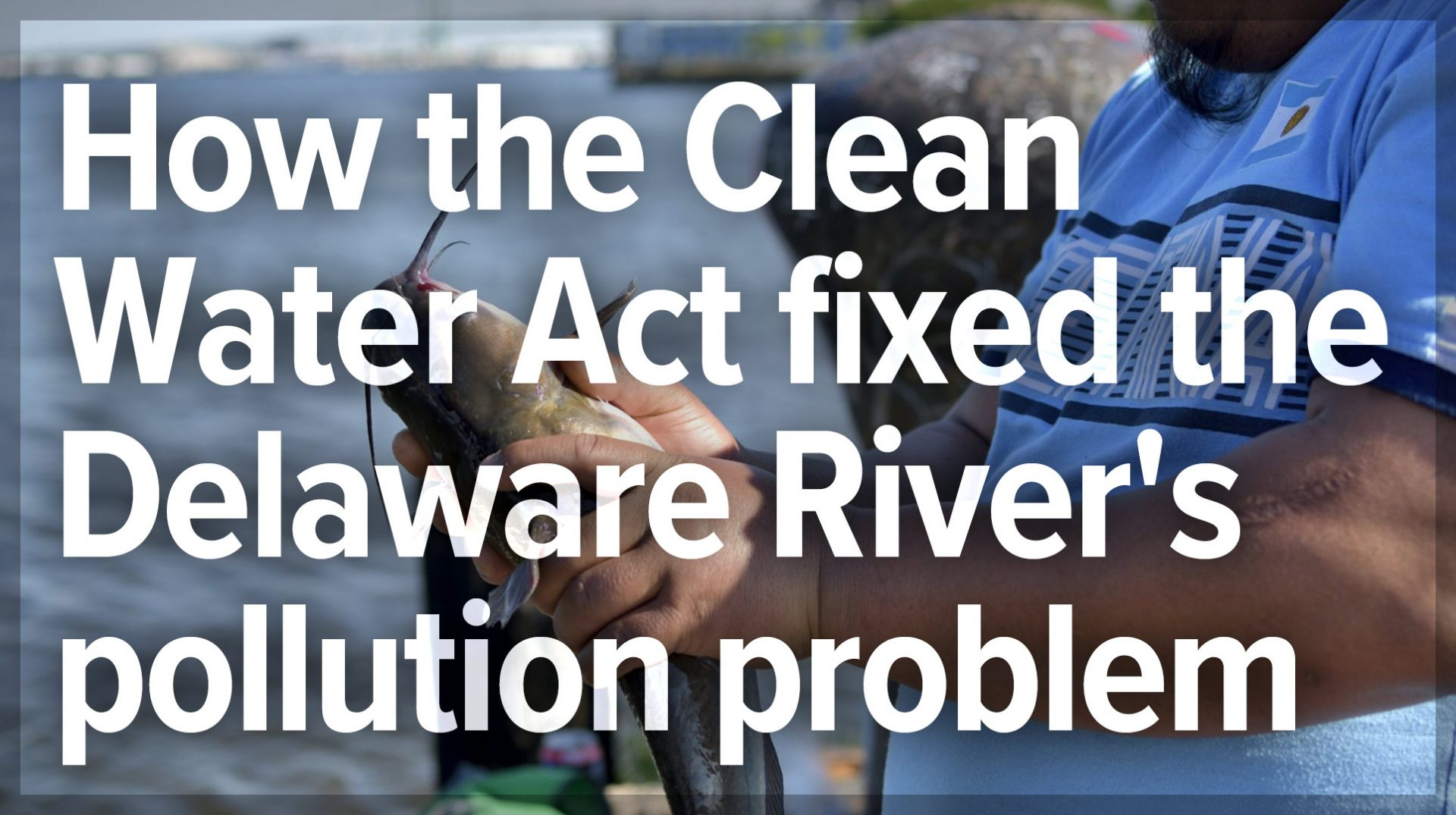 How the Clean Water Act fixed the Delaware River's pollution problem